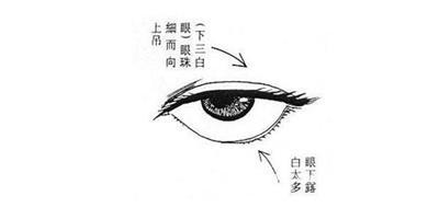 下三白眼的含義詳解
