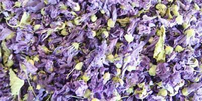 生活小常識:紫羅蘭花茶的功效與作用介紹