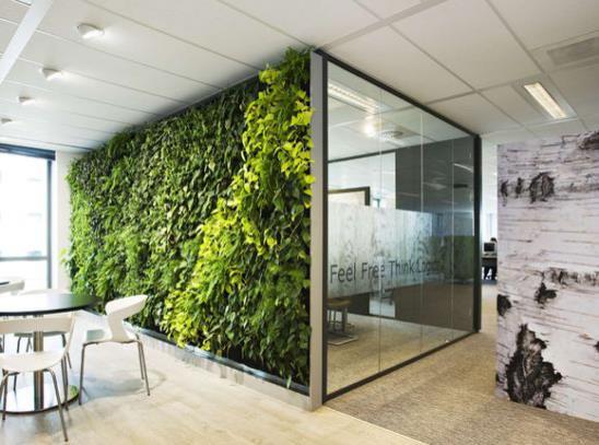 Parete Piante Artificiali : 如何設計室內植物牆?室內植物牆做法有哪些? 愛我窩
